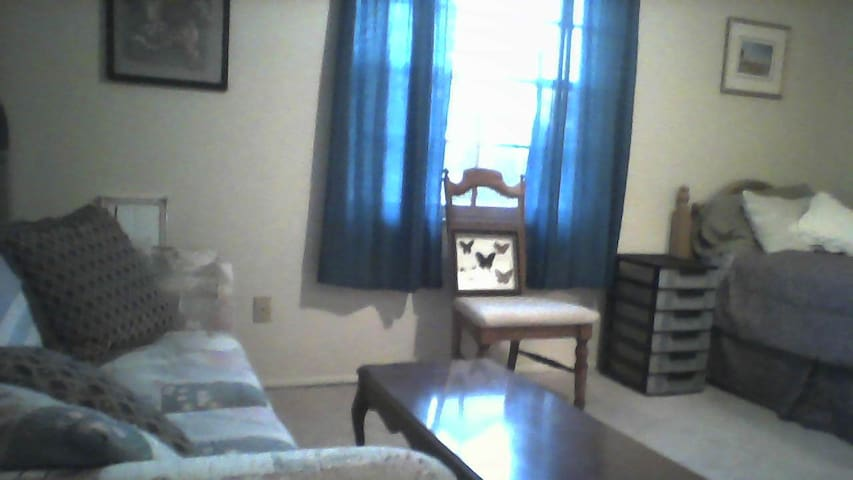 Comfortable room ,quiet and clean - Spring Hill - Casa