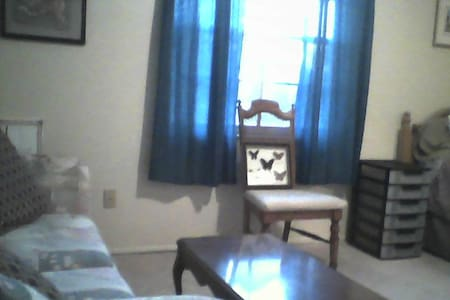 Comfortable room ,quiet and clean - Spring Hill