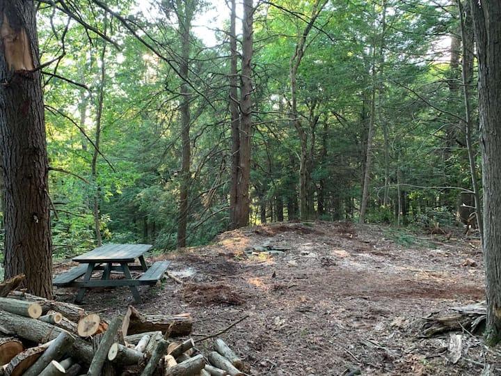 Overlook Forest Camp - CAMPSITE - OPEN!