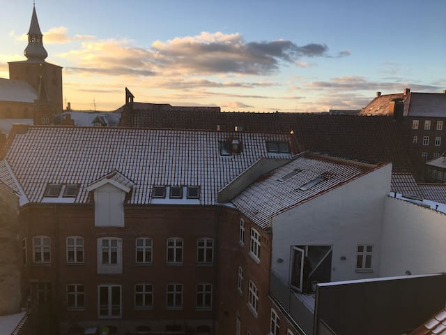 Fantastic City Center apartment with great views - Randers - Appartement