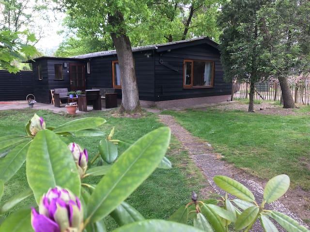 Veluwse Bos Lodge in Otterlo