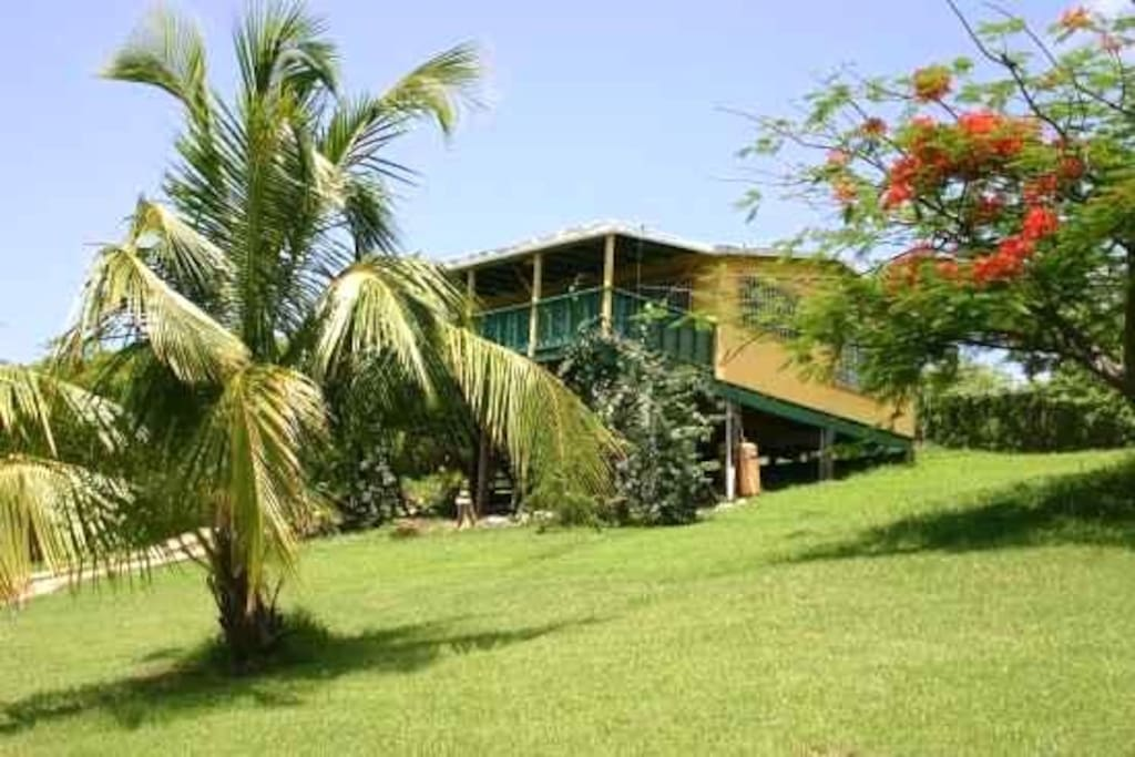 Amarilla Casita In Vieques W Wifi Houses For Rent In