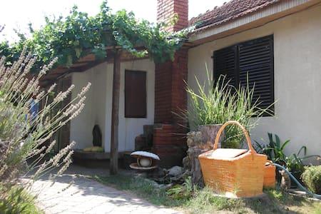 Apartment Pržić