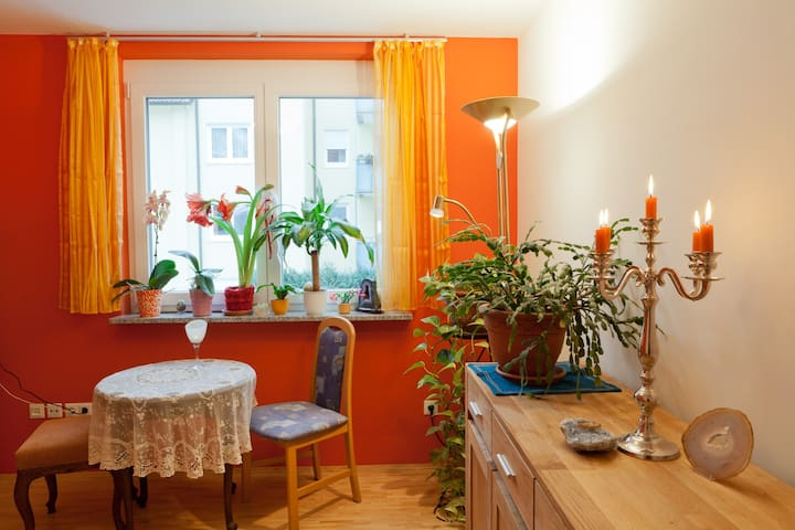 Nice, charming room for fair guests - Núremberg - Casa