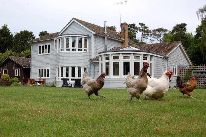 Hare lodge b&b - Peasenhall