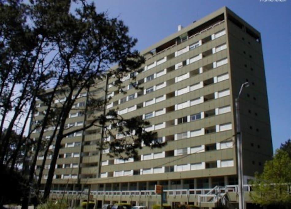 Edificio Torre Antares