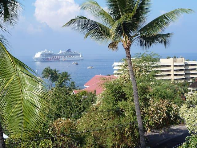 Panoramic Ocean View Condo- Kona!