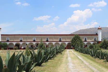 Ex- Hacienda San Buenaventura, del Siglo XVII.