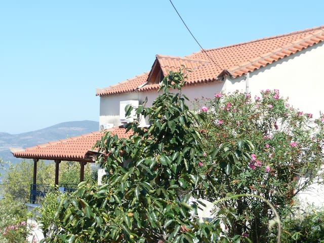 proastio village, messinia, greece - Messinia - House
