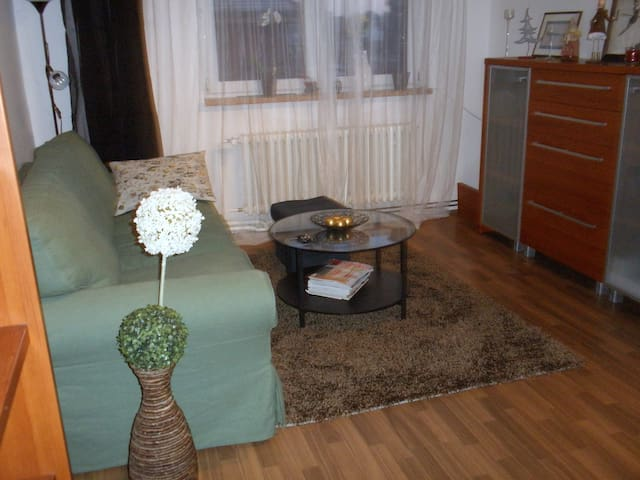 attic apartment (furnished) 2+kk  - Prag - Daire