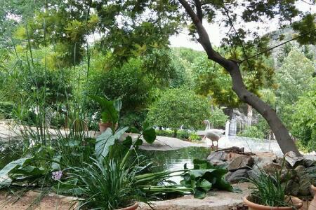 Solskinshuset - et paradis i Syd Spanien - Monda - Naturhytte