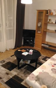 2 bedroom appart. 15 min. from Paris by train RER - 巴涅(Bagneux) - 公寓