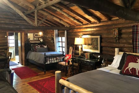 Early 1900s Log Cabin at Rogers Lake - Suite Style