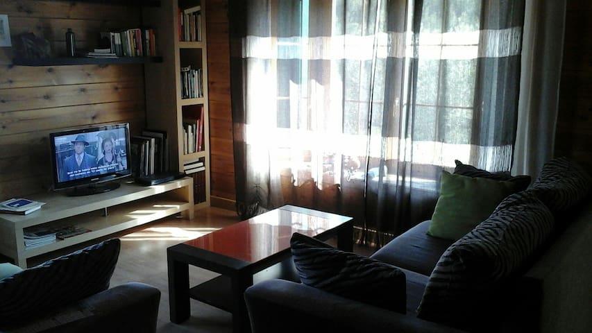Sala d'estar. Acollidora i confortable