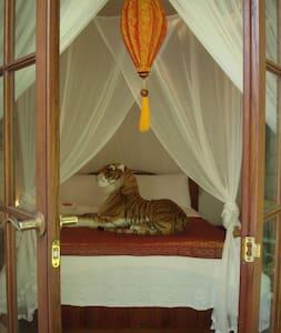 Romantic, Exotic Rainforest Retreat - Buderim - Rumah
