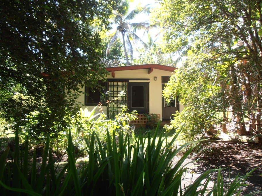 The Honey House, nestled in the garden....