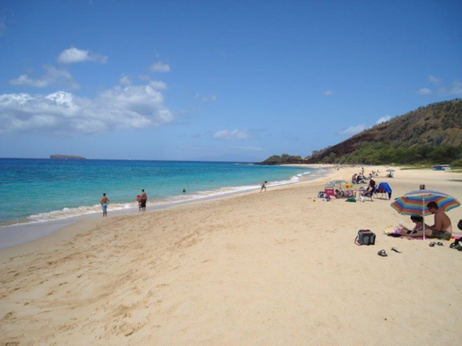 World Famous Makena Beach which is a short drive from the house
