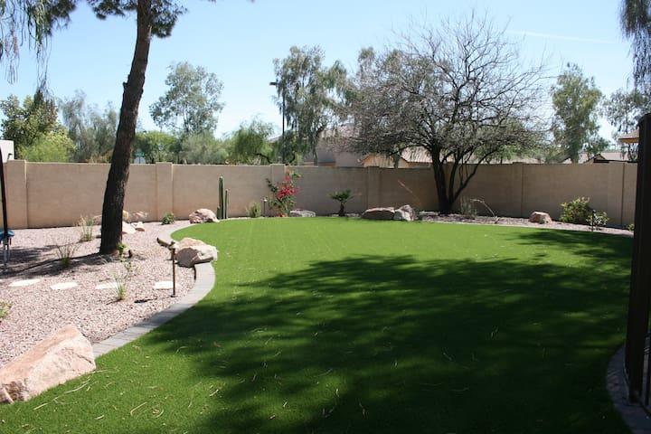 Modern Desert Paradise