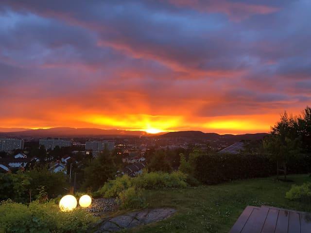 Oslo Panoramic - go green!