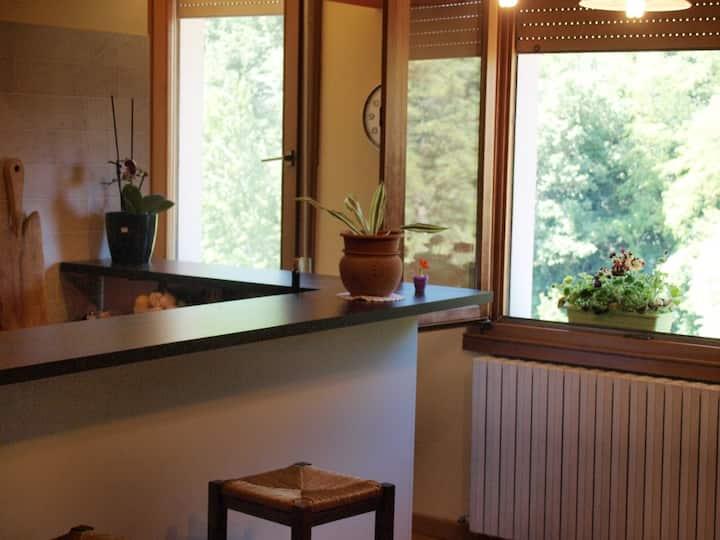 Londa-Florence Tuscan apartment