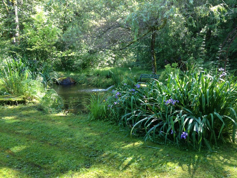 View of pond from cottage