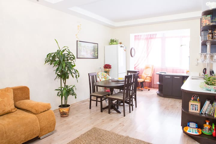 2 room apartment in Kiev  for rent - Sofiivs'ka Borshchahivka - Daire