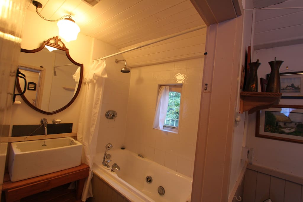 Main bathroom with rain shower and Jacuzzi tub...