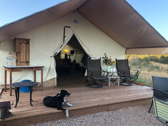 """Star Gazer"" ""1 of 23 best Glamping spots in US"""