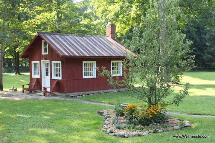 Thoreau's Cozy Cabin by the River - Annsville - Hytte
