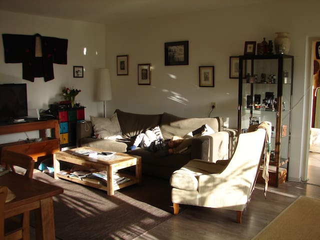 Sunny flat in the park - Amsterdam - Daire