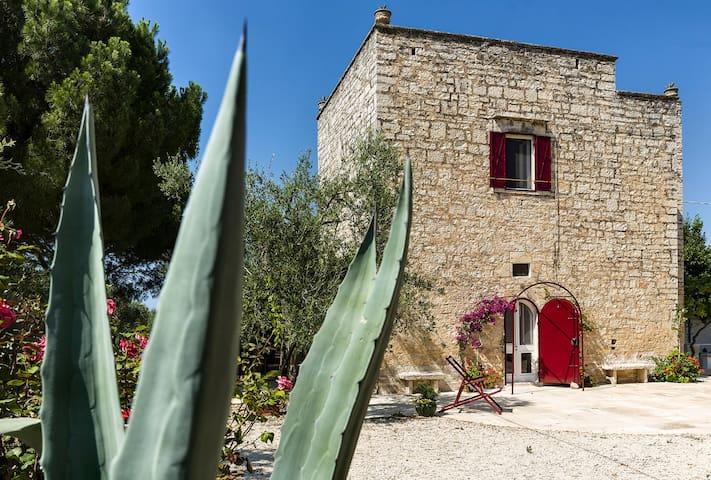 Casa Vacanze Torre Gigliano Ruvo di Puglia - Ruvo di Puglia - 一軒家