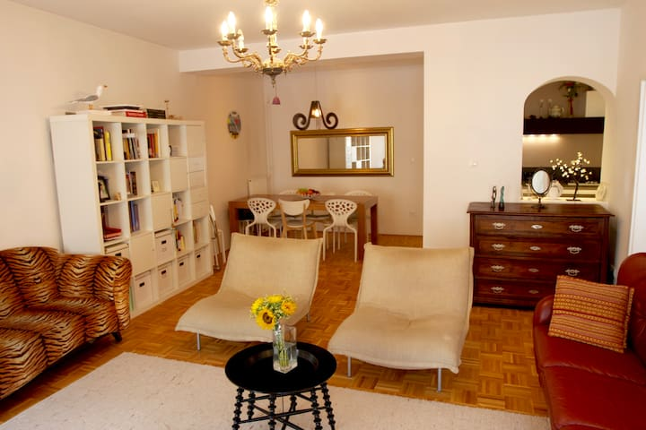 Charming apartment in heart of old town Ljubljana - Ljubljana - Lägenhet