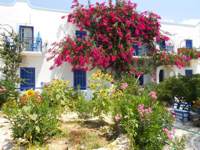 Aegiali Beach Double Room, Amorgos - Amorgos