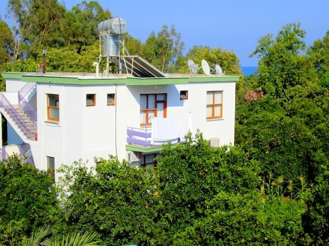Dolunay Guesthouse - Kumluca - Bed & Breakfast