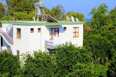 Dolunay Guesthouse - Kumluca - ที่พักพร้อมอาหารเช้า