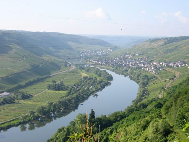 Staying at a winery on the Mosel - Reil - Bed & Breakfast