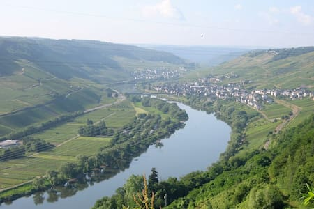 Staying at a winery on the Mosel - Reil - ที่พักพร้อมอาหารเช้า
