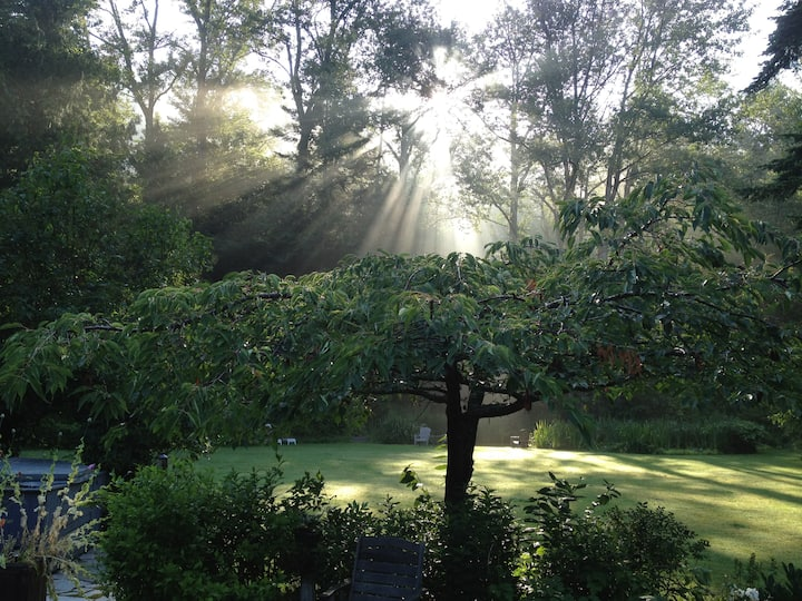 Pond Cottage - Fragrance Falls Farm