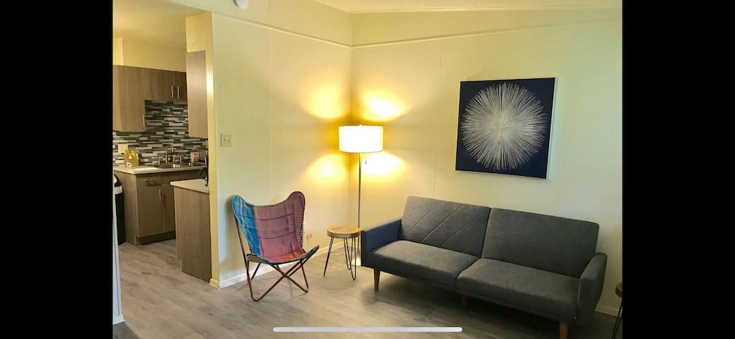 Fantastic 1br apt 7 mins from downtown Austin!