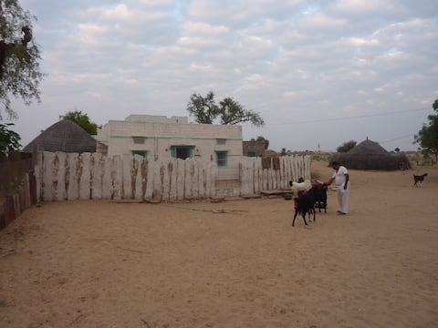 Desert Home Stay