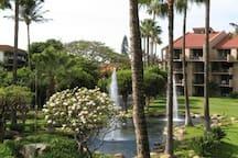 Lanai view of fountains.