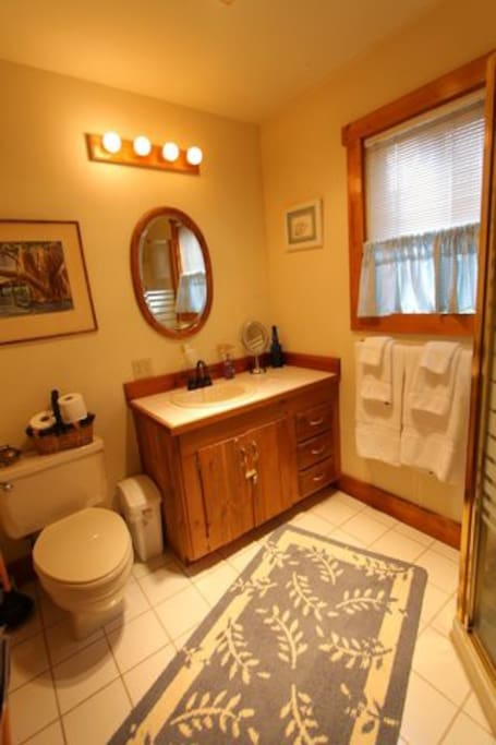 Downstairs Full Bathroom with shower