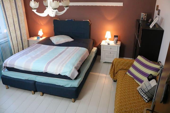 Room in Luxembourg - Antoine