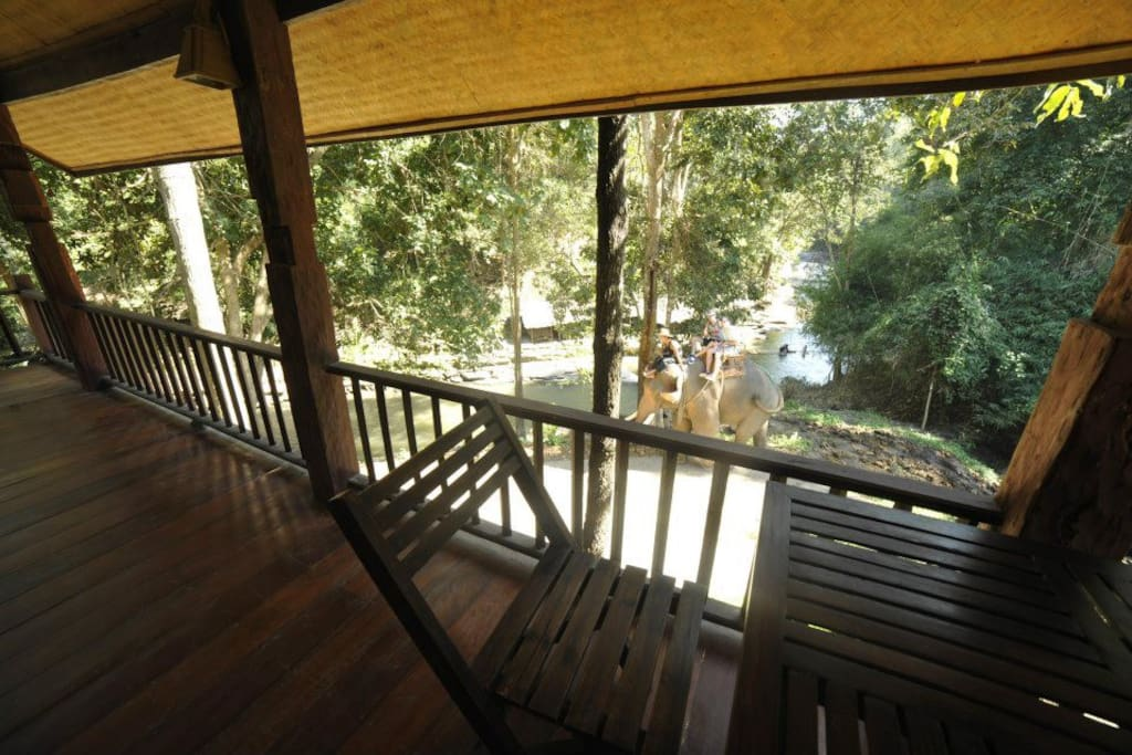 Relax on your balcony surrounded by nature!