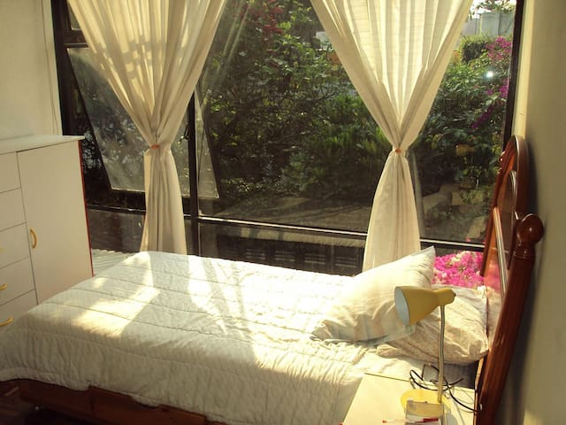 Beautiful single room at Coyoacan! - Mexico City - House