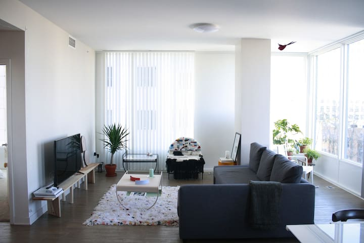 Curated space in downtown San Jose Apartment