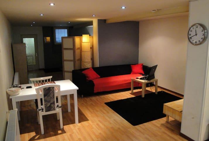 Spacious basement studio near city - Rotterdam - Apartemen