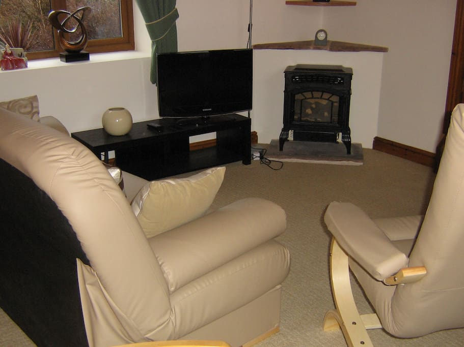 Lounge area with TV and gas fire