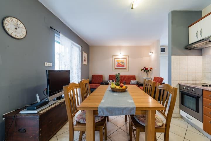 Apartment Fani in Jelsa A2+2