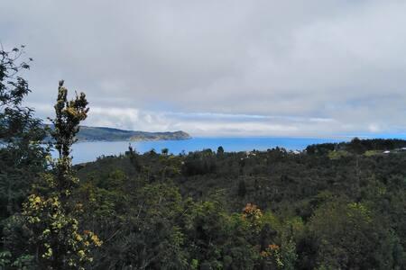 Refugio bosque-mar
